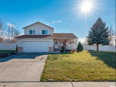Lindon Single Family Home For Sale: 795 W 320 N