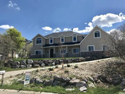 Elk Ridge Single Family Home For Sale: 95 W Salem Hills Dr