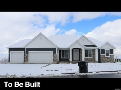 Mapleton Single Family Home For Sale: 1253 S 1300 W #9