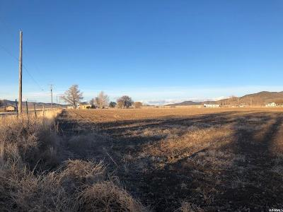 Delta, Fillmore, Holden, Scipio, Meadow, Kanosh, Oak City, Leamington, Hinckley Residential Lots & Land For Sale: 700 N State