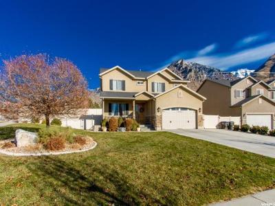Provo Single Family Home For Sale: 918 S Cinnamon Ridge Dr E