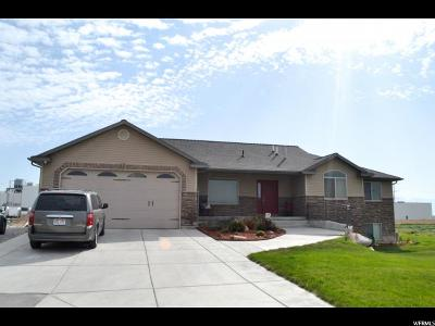 Tremonton Single Family Home For Sale: 751 N 2300 W