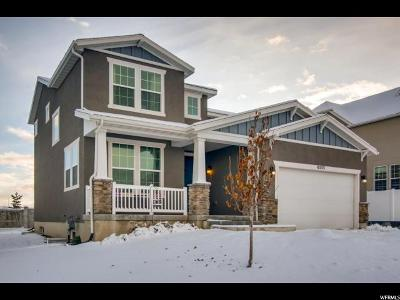 West Jordan Single Family Home For Sale: 6553 W Annie Lee Way