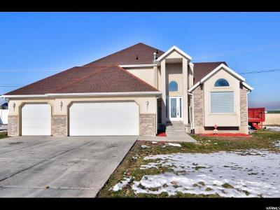 West Jordan Single Family Home For Sale: 4642 W Peak Dr S