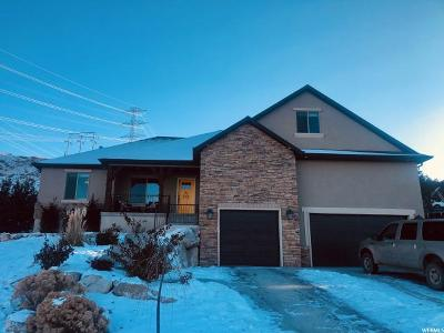 Eagle Mountain Single Family Home For Sale: 3096 E Loch Doon Ln N
