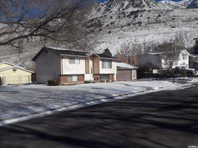 Brigham City Single Family Home For Sale: 625 Kingston Place