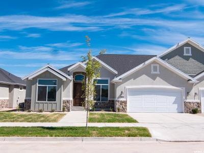 Provo Single Family Home For Sale: 1144 N Reese Dr W #25