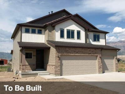 Weber County Single Family Home For Sale: 4532 S 2950 W