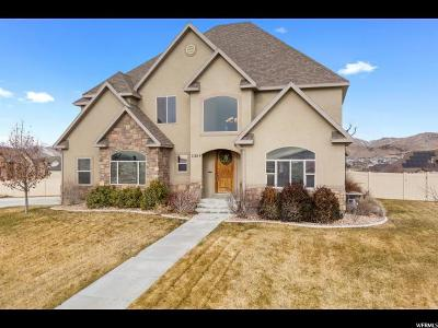 Eagle Mountain Single Family Home For Sale: 2389 Prairie View Dr
