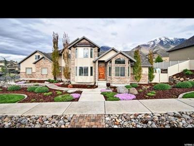 Salem Single Family Home For Sale: 773 S 750 E