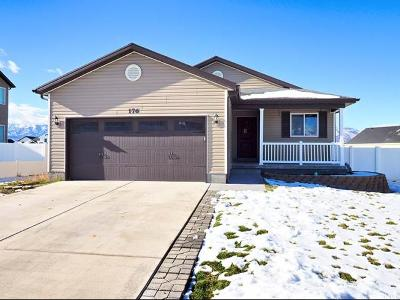 Grantsville Single Family Home For Sale: 176 S Ranch Rd
