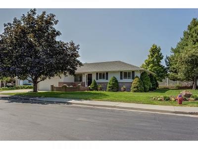 Spanish Fork Single Family Home For Sale: 1110 E 1025 S