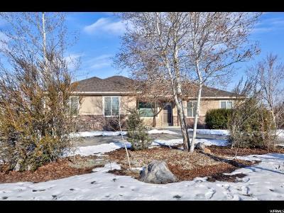 Draper Single Family Home For Sale: 370 W 13130 S