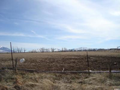 Tooele County Residential Lots & Land For Sale: 424 E Nygreen St. S