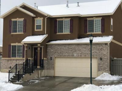 Eagle Mountain Single Family Home For Sale: 9073 N Kilkenny Way
