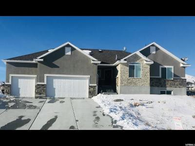 Tooele County Single Family Home For Sale: 1706 W Rim Rock Dr. S