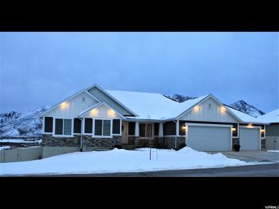 Santaquin Single Family Home For Sale: 597 Crest Dale Ln