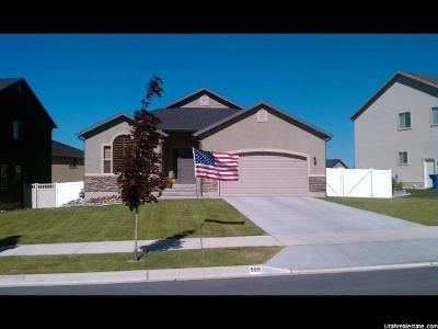 Provo Single Family Home For Sale: 989 S Cinnamon Ridge Dr