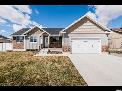 Wellsville Single Family Home For Sale: 587 N 850 E