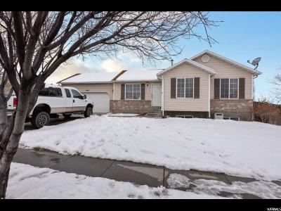 Single Family Home For Sale: 693 N 200 W