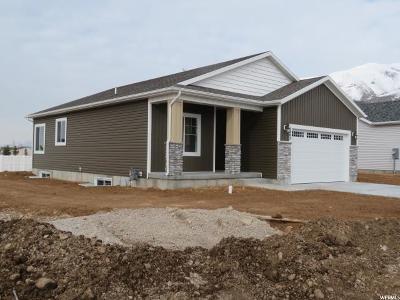 Hyrum Single Family Home For Sale: 1205 E 330 S