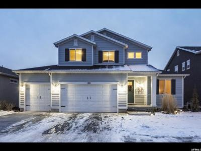 Vineyard Single Family Home For Sale: 540 N 120 E