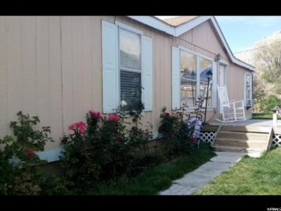 Helper Single Family Home For Sale: 106 Ivy Street