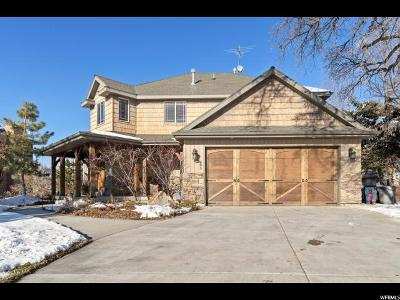 Springville Single Family Home For Sale: 843 E 900 S