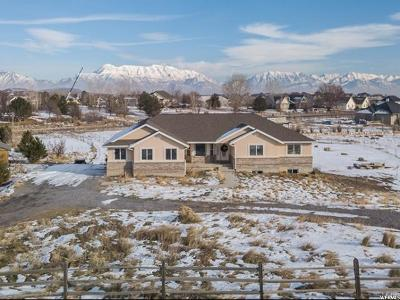 Eagle Mountain Single Family Home For Sale: 9264 N Canyon Wash Dr