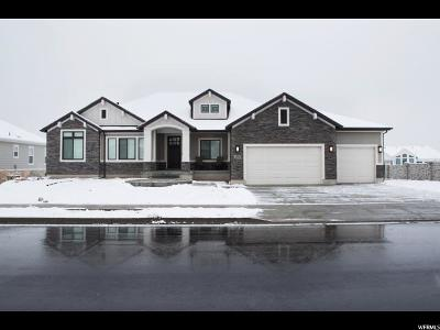 Kaysville Single Family Home For Sale: 1184 Kentucky Derby Way