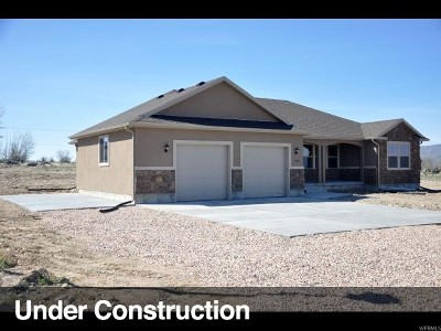 Nephi Single Family Home For Sale: 1058 S 175 E #6