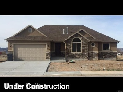 Nephi Single Family Home For Sale: 1086 S 175 E #4