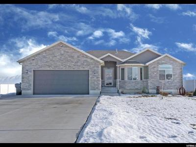 Grantsville Single Family Home For Sale: 603 Gold Dust