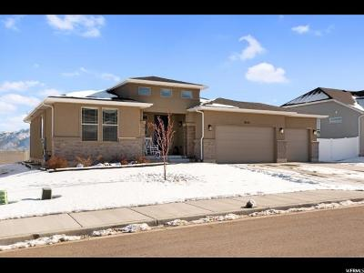 West Jordan Single Family Home For Sale: 9553 Alane Hollow Rd