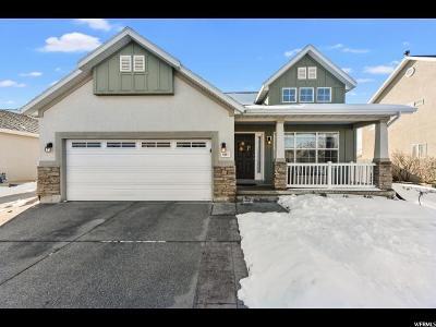 West Jordan Single Family Home For Sale: 6587 W Bridge Maple Ln S