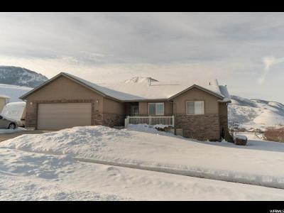 Wellsville Single Family Home For Sale: 1211 S 60 W