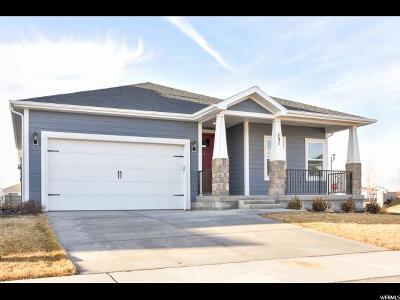 Vineyard Single Family Home For Sale: 151 N 410 E #6