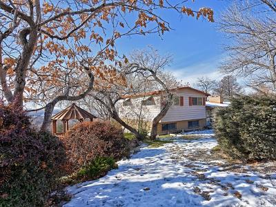 Salt Lake City Single Family Home For Sale: 729 N West Capitol St W