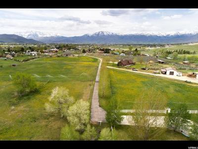 Wasatch County Single Family Home For Sale: 3875 E Buehler Ln