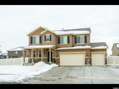 Single Family Home For Sale: 399 W Regatta Ln #122