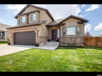 Wasatch County Single Family Home For Sale: 2024 S 150 E