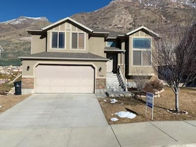 Provo Single Family Home For Sale: 2341 S Alaska Ave