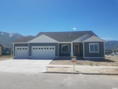 Mapleton Single Family Home For Sale: 2529 W Jackson St #67