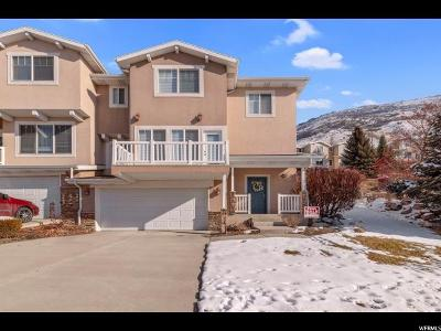 Provo Townhouse For Sale: 1263 S Alpine Way E