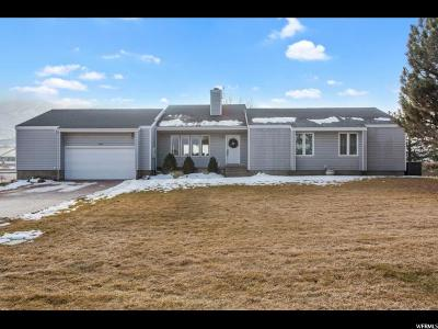 Herriman Single Family Home For Sale: 6221 W 13900 S