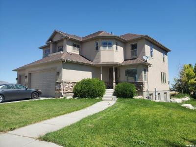 Grantsville Single Family Home For Sale: 31 E Williams Ln S
