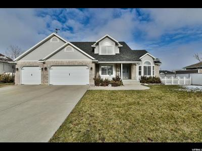 Magna Single Family Home For Sale: 8058 W Coon Canyon Way