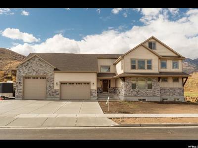 Mountain Green Single Family Home For Sale: 3811 Thurston