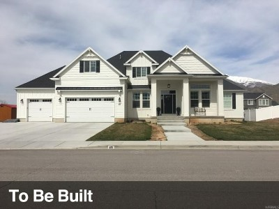 Utah County Single Family Home For Sale: 940 S North View Circle Cir #12