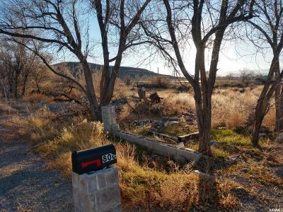 Carbon County, Emery County Residential Lots & Land For Sale: 806 S 400 E